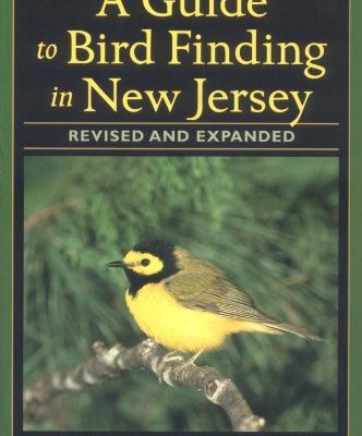 A-Guide-to-Bird-Finding-in-New-Jersey-0