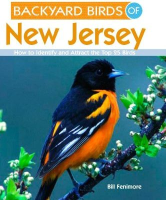 Backyard-Birds-of-New-Jersey-How-to-Identify-and-Attract-the-Top-25-Birds-0