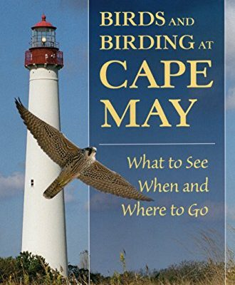 Birds-and-Birding-at-Cape-May-What-to-See-and-When-and-Where-to-Go-0