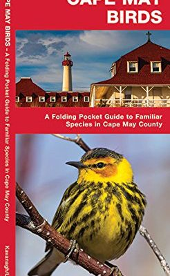 Cape-May-Birds-A-Folding-Pocket-Guide-to-Familiar-Species-in-Cape-May-County-A-Pocket-Naturalist-Guide-0