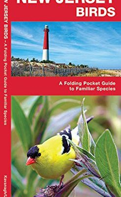 New-Jersey-Birds-A-Folding-Pocket-Guide-to-Familiar-Species-A-Pocket-Naturalist-Guide-0
