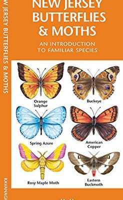 New-Jersey-Butterflies-Moths-A-Folding-Pocket-Guide-to-Familiar-Species-A-Pocket-Naturalist-Guide-0