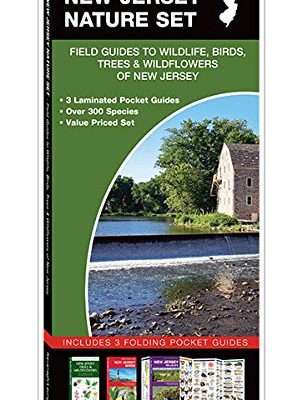 New-Jersey-Nature-Set-Field-Guides-to-Wildlife-Birds-Trees-Wildflowers-of-New-Jersey-0
