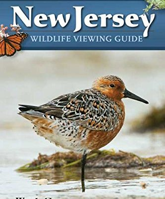 New-Jersey-Wildlife-Viewing-Guide-Where-to-Watch-Wildlife-Watchable-Wildlife-Series-0